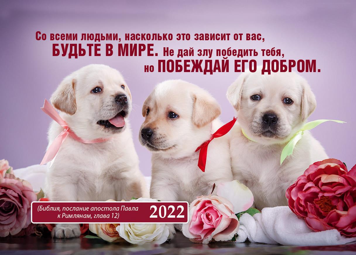 Карманные календари 2022