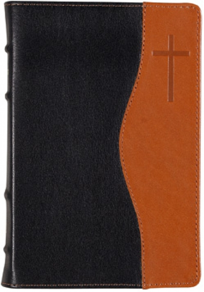 Библия 048 TIDT