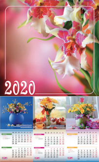 БЛ женский 2020